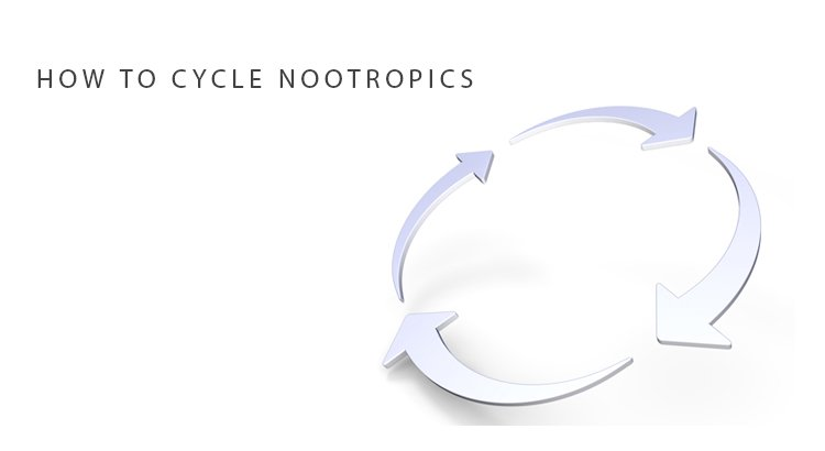 How To Cycle Nootropics To Avoid Tolerance Braintropic